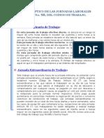 Cuadro Sinoptico de Las Jornadas Laborales i