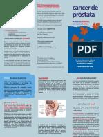 cancer de prostata.pdf
