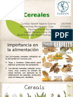 Cereales 1 (1)