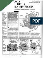 03 Saga de La Endosimbiosis