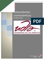 Antecedentes cromosómicos