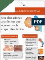 Biologia Mal Formaciones Congenitas (1)