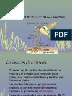 11_nutricion_plantas (1)