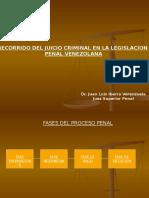 ESQUEMA Proceso Penal