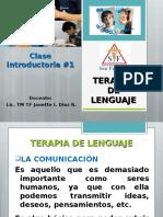 TERAPIA  DE LENGUAJE clase .ppt