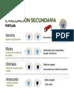 Cuadro Pupilas