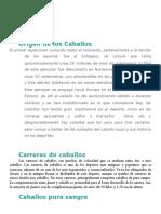 Caballos Blog g Paloma