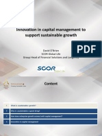 P4 Final Slides - Innovations in Capital Management to Support Sustainable Growth (David O'Brien)_Demobb