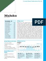 Indonesia 10 Maluku Prev