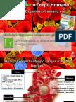 PPT7 Sangue