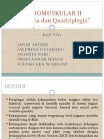 Paraplegia Dan Quadriplegia