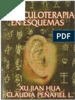 La Auriculoterapia en Esquema