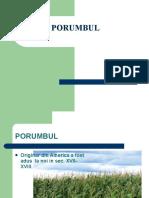 Porumbul PPT.ppt