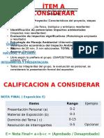 Criterios de La Exposicion EIA