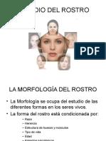 estudiodelrostro-101020162601-phpapp02
