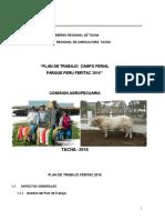 Plan de Trabajo Feritac 2016