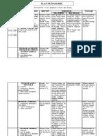 93326235-Plan-de-ingrijire-2.pdf