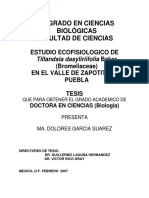 Estudio Ecofisiológico de Tillandsia
