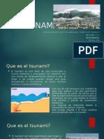 El Tsunami Pp