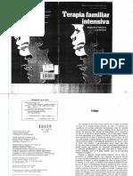 Laing, Ronald.1985. Mistificación, confusión y conflicto