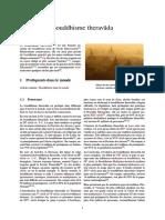Bouddhisme theravāda.pdf