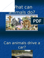 Can Ability Animal