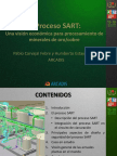 PROCESO SART.pdf