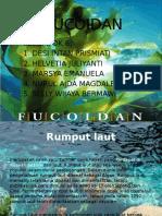 2.a. Fucoidan.pptx