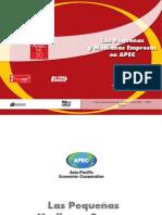 Libro Pyme en el APEC