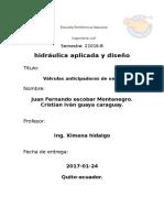 Informe Válvula Anticipadora de Onda o Valvula Anti Golpe de Ariete