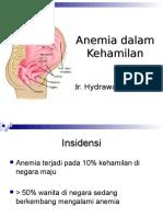 10.Anemia Dalam Kehamilan-2010