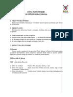 anexo_5_-_pauta_para_informe_de_practica_profesional.doc