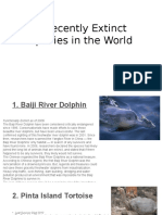 5 Recently Extinct Species in the World