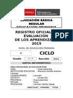 Registro Auxiliar de Evaluacion Primaria 2015 2