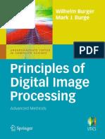 Wilhelm Burger, Mark J. Burge - Principles of Digital Image Processing. Advanced Methods