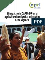 Informe Final Cespad Cafta PDF