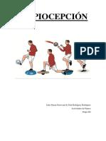 PROPIOCEPCIÓN.pdf