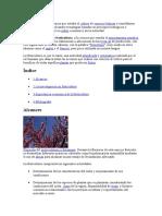 La fruticultura es la ciencia que estudia el cultivo de especies leñosas y semileñosas productoras de frutas.docx