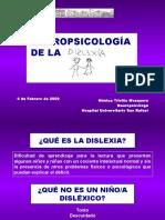 Neuropsicologia de La Dislexia