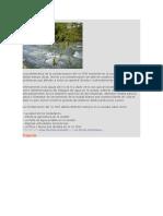 Contaminacion Del Rio Chili