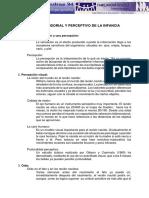 Desarrollo sensorial y perceptivo en la infancia.pdf