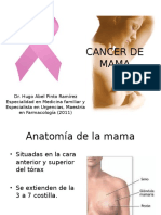cancerdemamacompleto-120613182520-phpapp02