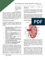 Fisiología II Clase 6 Estructura Funcional Renal. Filtración Glomerular y Flujo Sanguíneo Renal
