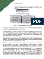 Leccion8.PLASTICOS.MateriasPrimas.pdf