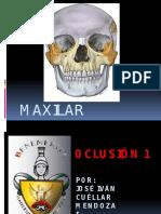 maxilarsuperior-130205185127-phpapp02.pptx