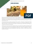 Cervejeiro Artesanal 1