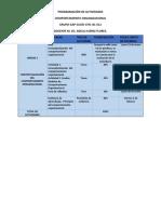 Programación de Actividades.pdf