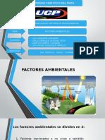 FACTORES-AMBIENTALES (1)