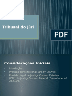 Tribunal Do J Ri - MINI CURSO