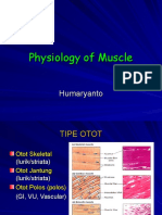 Fisio Otot
